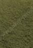 50328_SanglPro_Terra Sand Grün trocken_72dpi